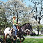 Horse camping with direct access to the Gettysburg Horse Trails at Artillery Ridge Camping Resor