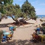 Mojito Beach Bar照片