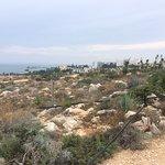 Ayia Napa Cactus Park照片