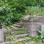 Photo of Hestercombe Gardens