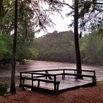 Lumber River State Park Photo