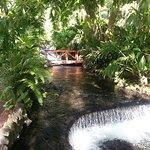 Tabacon Hot Springs照片