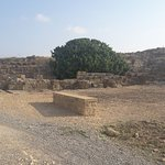 Kato Paphos Archaeological Park照片