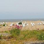 Aldeburgh Beach Photo