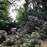 Pruhonice Park ภาพถ่าย