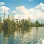 Zapata Swamp - Bay of Pigs, Matanzas, Cuba