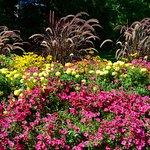 صورة فوتوغرافية لـ Glenhyrst Art Gallery and Gardens
