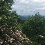 写真Coopers Rock State Forest枚