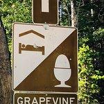 Grapevine Bed & Breakfast照片