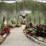 詩麗吉王后植物園照片