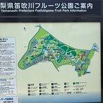Yamanashi Fuehukigawa Fruit Park照片