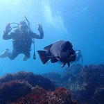 Fun Diving and Diving Courses