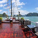 Apricot Cruise Fotografie