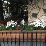 Small outside Flower box
