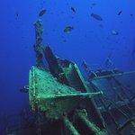 Cyprus Diving Adventures Photo