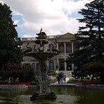 Дворцовый парк.