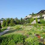 【海とガラスと庭園のミュージアム】7,000坪の水上庭園では季節の花々を愛でる汐風さんぽを。