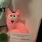 Not exactly at the hotel but nearby, on Jecna street is a shop with handmade cats - each is uniq