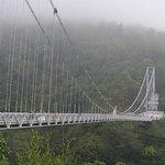 Bridge from distance