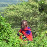 The day begins for our Maasai neighbors at dawn - we invite you to be part of this experience