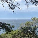 Calanque de Port d'Alon Photo