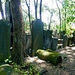 Foto de Jewish Cemetery (Cmentarz Zydowski)