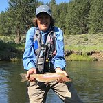 Wild rainbow trout from the Little Truckee River