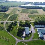 Drone photo of Carlos Creek Winery & Vineyards