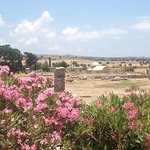 Foto de Temple of Aphrodite