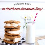 Ice Cream Sandwiches and Freshly Baked Cookies!!!