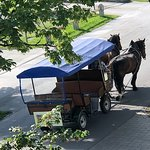 The Horses and Carriages Going Home for the Night