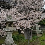 Photo of Matsumae Park