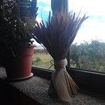 Hostal y Casa Rural la Colmena Photo