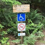 Well marked entry to accessible trail