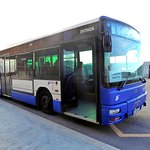 Shuttle bus from cruise terminal to downtown area