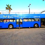 Turibus (Hop On Hop Off)