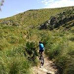 Photo of Roxybike Mountain Bike Mallorca