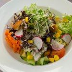 Frischer Salat von der Insel Reichenau