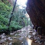 ภาพถ่ายของ Kimberley Off-Road Adventure Tours