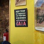 Gaia Restaurante Vegetariano