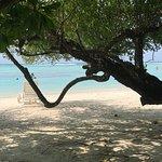 Adaaran Select Hudhuranfushi : Cuisine excellente et très variée chaque jour