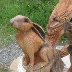 Billede af Welsh Wildlife Centre