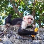 Islets of Granada *The Monkey Island*