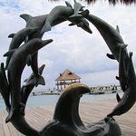 Dolphin Discovery Sculpture
