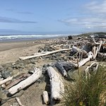 Coquille River Lighthouse Photo