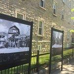 Mont Royal Avenue Photo