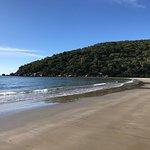 写真Finch Bay枚