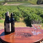 Outdoor tastings among the vines are available