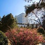 Реликтовый парк отеля Riviera Sunrise Resort & SPA ALUSHTA