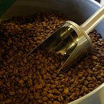 Nybrent kaffe